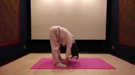 爱海老师养生瑜伽第十一节
