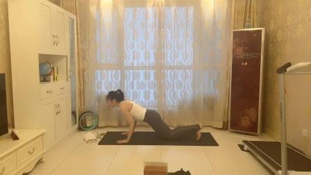 身体四肢训练教学