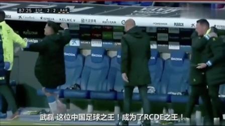中国球王,武磊足球集锦
