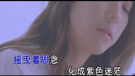 刘亚妮-无言的期盼【KTV发行-天子俊作品】.mpg