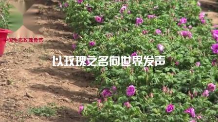 濟南貝思特生物科技有限公司,以玫瑰之名向世界發聲!