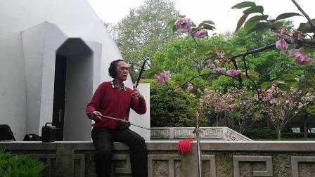 迎春 陈迪栋 中山公园新音乐台练琴
