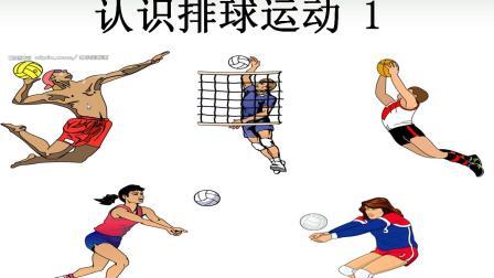 乐陶微学堂 —— 二年级体育 认识排球1