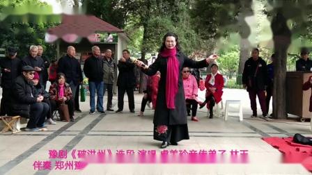 (林玉)豫剧破洪州选段