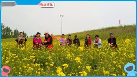 音乐歌曲&,榆垡滑雪场油菜花海&