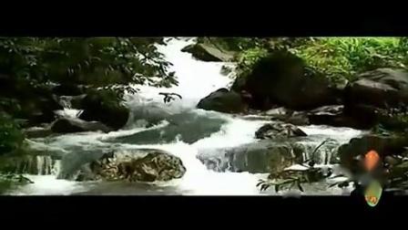 (佛教歌曲)(阿弥陀佛圣号)(佛教音乐)南无阿弥