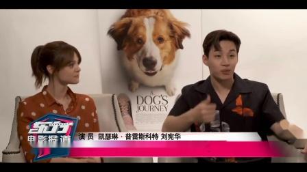 【东方电影报道20190513】对话《一条狗的使命2》主创,刘宪华着迷电影主题