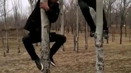 搞笑视频:爬树比赛(1)
