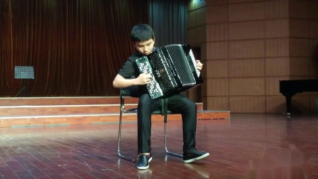 (1)2019手风琴春季学期汇报音乐会(武汉)