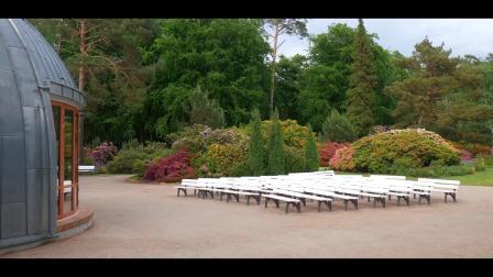 s241 2K超唯美画面鲜花花朵植物蜗牛公园实拍视频