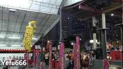 新加坡南仙龙狮体育会(第十二届牛车水新春国