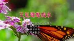音乐走廊&水清梦蓝-又见鸳鸯戏水【KTV】版