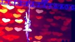 香港星秀优美的钢管舞视频1306*6189001