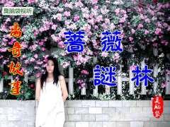 离奇故事《蔷薇谜林》16