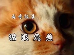 离奇故事《猫眼鬼差》20