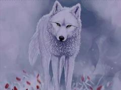 离奇故事《白狼宝藏》16