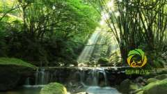 静心聆听,仙境天籁,涤荡心灵,减压疗伤音乐