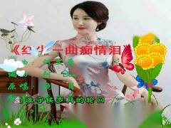 红尘一曲痴情泪(音乐迷)