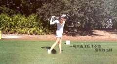 lpga美女职业高尔夫选手桑德拉盖尔一号木挥杆,