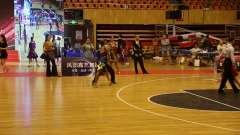 第十届国标(体育)舞蹈公开赛、等舞蹈大赛 (33)