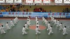 曲靖市第22届城市老年人体育运动会开幕式区武术