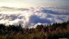 承德隆化雾玲山风景区