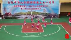 河南省第十三届老年人体育健身柔力球交流活动