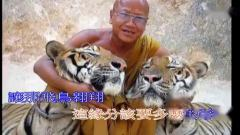 (佛教歌曲)人間淨土(佛教音乐)明海法師-