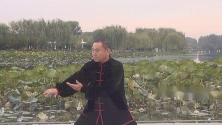 传统杨氏太极拳入门套路