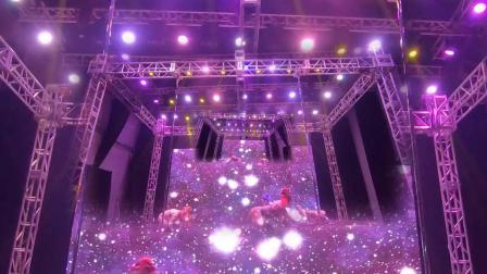 第十三届中国钢管舞锦标赛 夏春雪学生团队【盘
