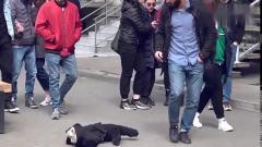 国外爆笑街头恶搞突然跑出一个吓人的玩偶,路