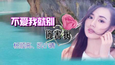 《不爱我就别伤害我》杨顺高和凯小晴,演绎现