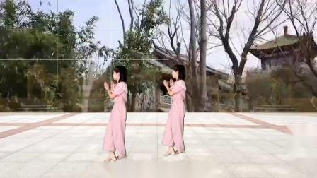 美女广场舞《长路漫漫陪你走》舞蹈简单欢快,