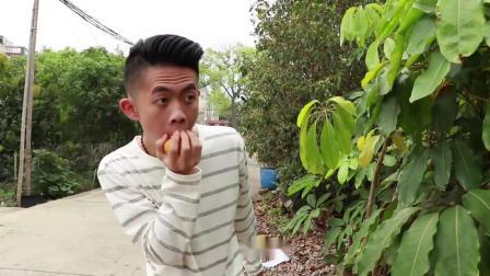 闽南语搞笑视频:农村小伙偷吃芒果,为何遭众