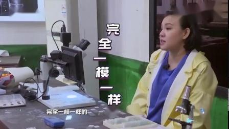 综艺片段杨幂兴奋跳舞,魏大勋突然激动,吐槽