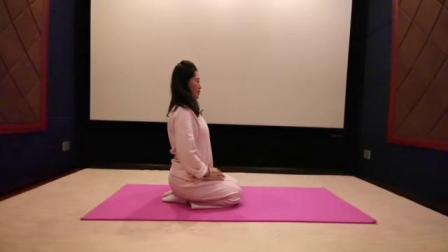 爱海老师养生瑜伽第八节