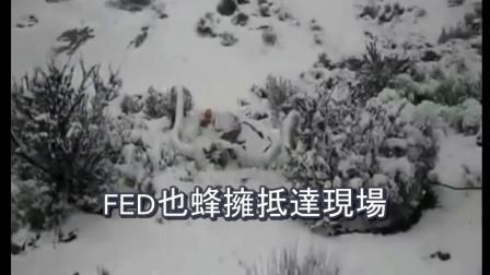 UFO 科羅拉多州飛碟墜毀事件