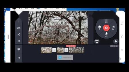 第三课 视频素材的加工与处理-配置背景音乐