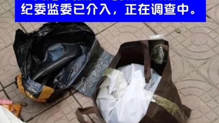 女商人举报多名官员放贷牟利并受贿 甘肃礼县纪委监委调查