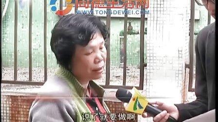 同德生活网 广州将成立 同德围地区综合整治小组 同时成立 咨询监督委员会