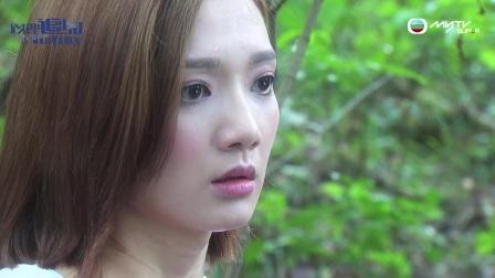 心理追兇Mind Hunter - 汪海澄的劇本 (TVB)