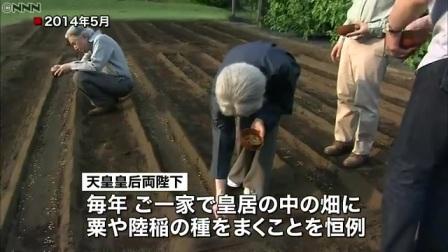 皇居の畑に種を…眞子さま「お手まき」参加