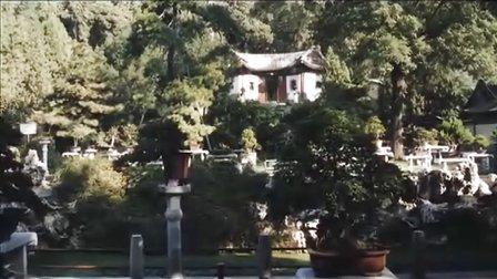 颐和秋韵桂花文化节