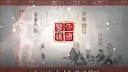 张悟本_大国医道16_脾为后天之本