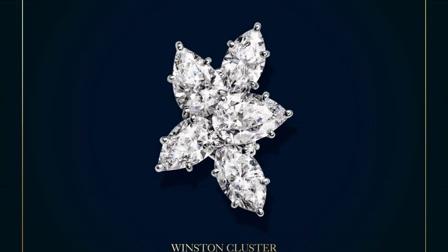 海瑞温斯顿经典锦簇Winston Cluster