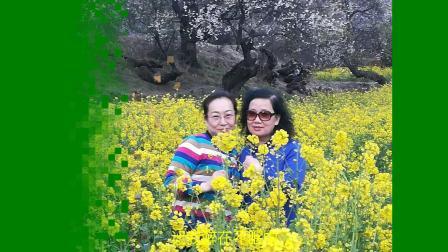 孙黎西藏旅游音乐相册合集2019-04-22