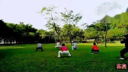 杨氏太极拳【自然门】杨白林【63岁】教学晨练,