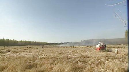 雷沃 东北水稻收割机