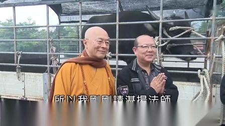 海涛法师2019-弘法合集