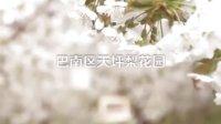 """网络歌手""""乔雅夕""""制作《重庆市巴南区梨花节》qq2841636"""